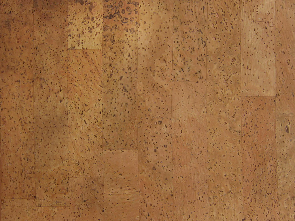 Kork Rayher liimuv 90g/m2 20.5x28cm Nature