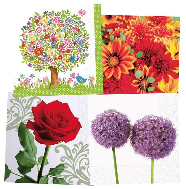 Salvetes Colourful Life 33x33cm 20gab. ziedi